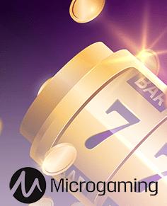 freebonus-ca.com gaming club casino  microgaming